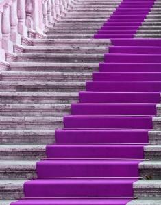 purplecarpet